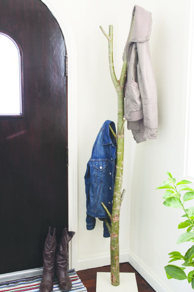 coat rack made from a tree branch