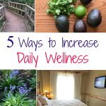 5 Simple Ways to Improve Your Health & Wellness