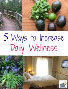 These five easy steps that you can take daily can significantly improve your daily wellness and health!