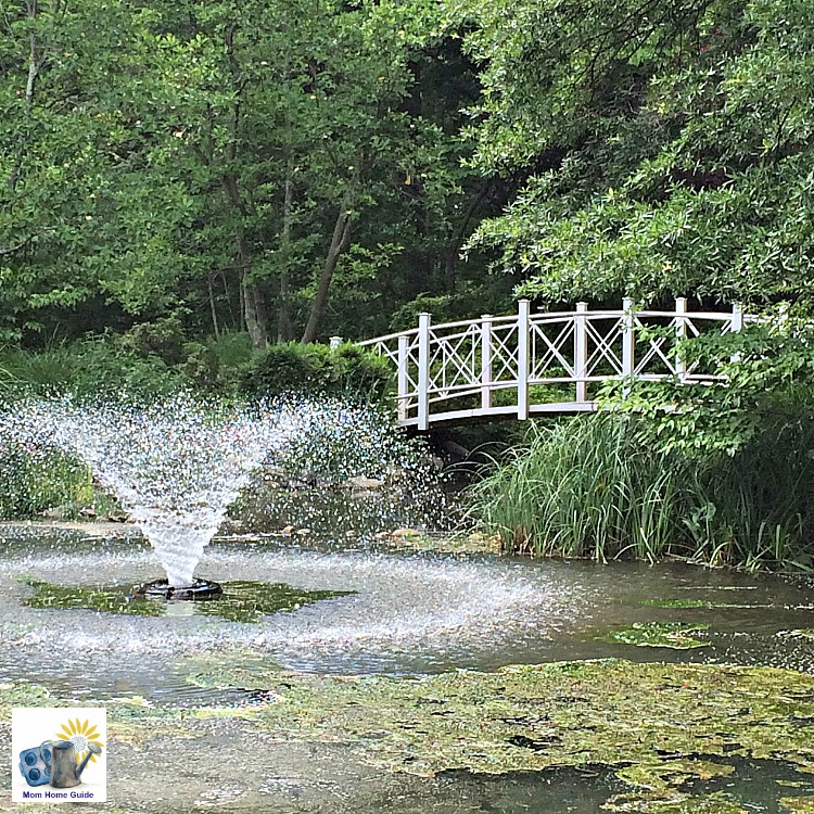 Bridge over pond in Sayen Gardens in Hamilton, NJ