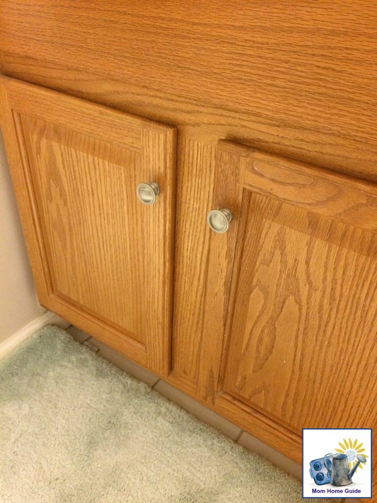 I am debating what to do with the grainy oak cabinets in my home's master bathroom.