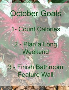 My goals for October. Setting small monthly goals really helps me to get things done.
