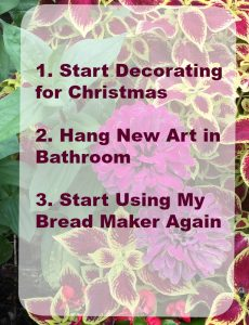 November goals from Mom Home Guide