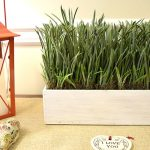 Adding Greenery to a Family Room
