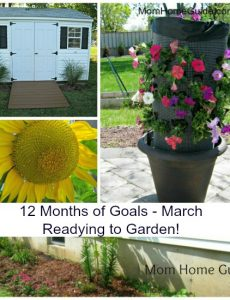 12 months of goals -- March. For this month, I hope to get ready to garden this spring and summer. A big part of this goal is to enclose my raised garden beds.