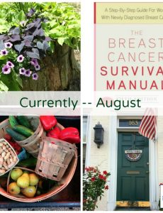 """Lauren of Mom Home Guide shares what she's been up to this summer in her """"Currently"""" post"""