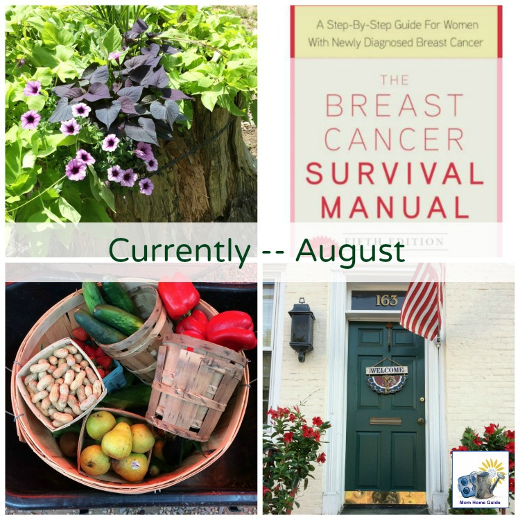 "Lauren of Mom Home Guide shares what she's been up to this summer in her ""Currently"" post"