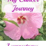 My Cancer Journey – Breast Lumpectomy