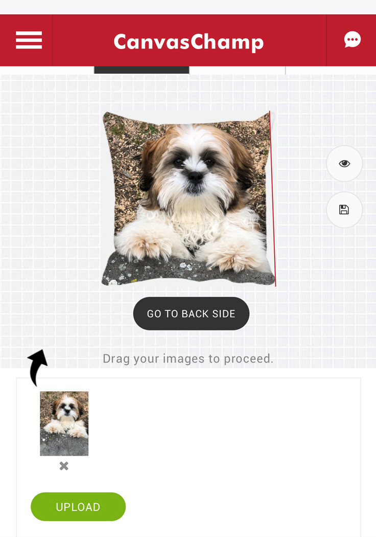 Canvas Champs offer custom canvas photo pillows and prints