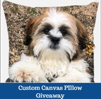 custom canvas pillow giveaway