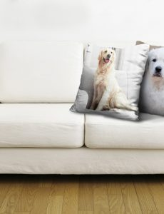custom photo pillows and printed throw pillows from Canvas Champ