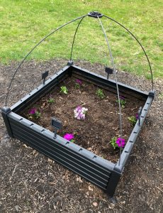 spring and summer petunia and alyssum flowers planted in an easy to assemble Keter raised garden kit
