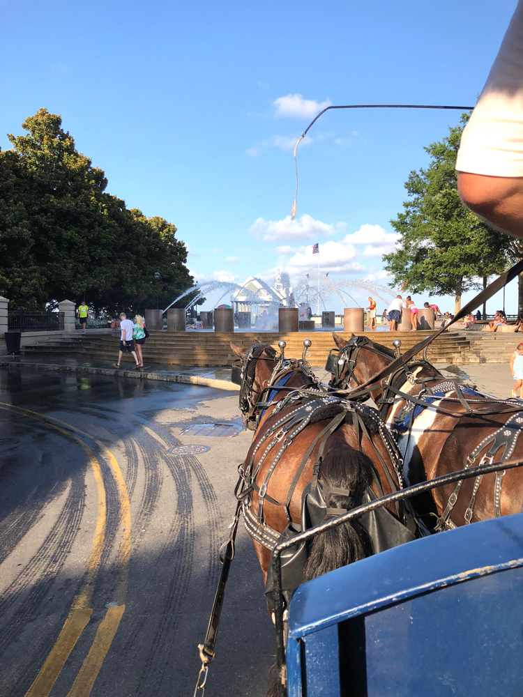 charleston carriage ride by the waterfront