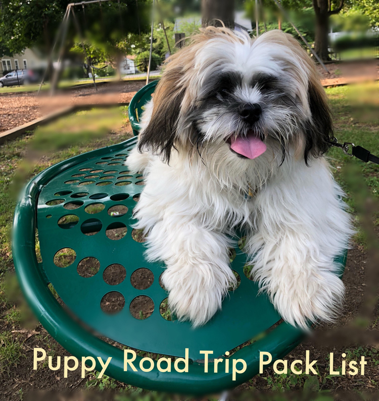shih tzu puppy on a leaf shaped bench in a park