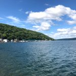 Puppy Summer Road Trip to New York and Canada – Part 2 (Keuka Lake)