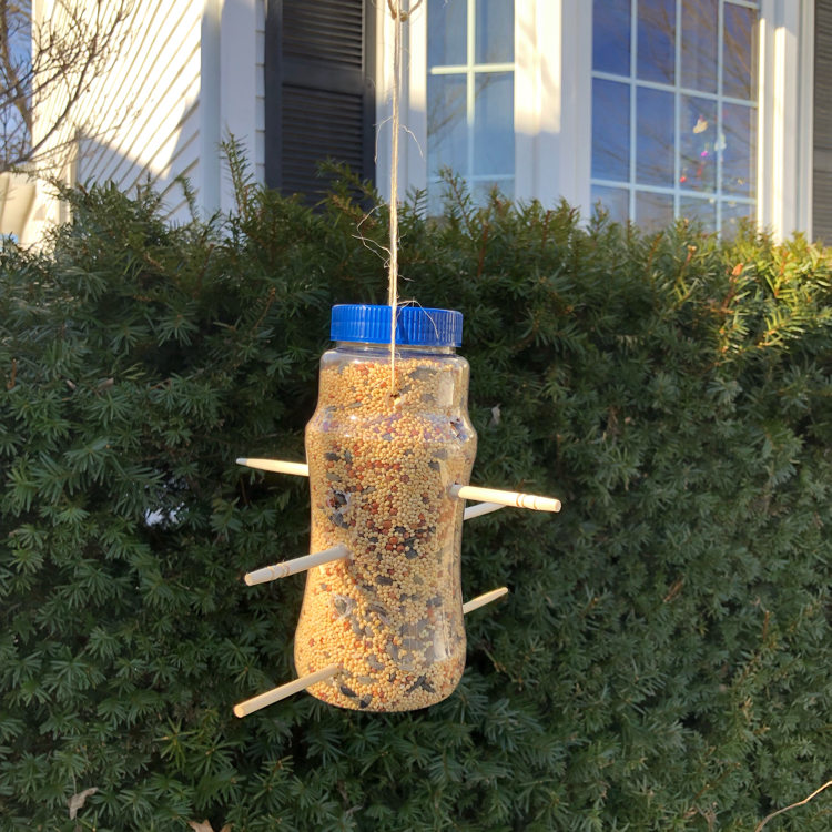 A simple bird feeder made from a used plastic bottle