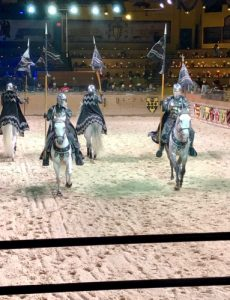 Medieval Times offers a fun two-hour show with gallant knights and beautiful horses.