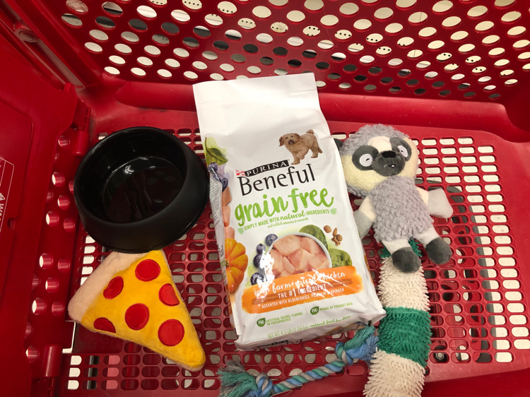 Target is a great place to find all your pet's needs