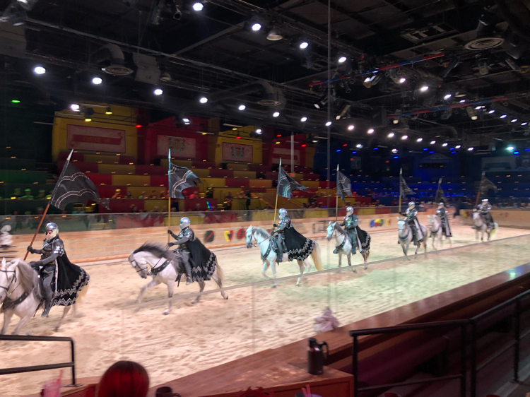 A parade of mighty knights at Medieval Times