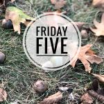 Friday Five — Fall Wreath, Kitchen Update, New Reads, Mulch & String Lights
