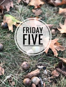 Friday Five - Mom Home Guide