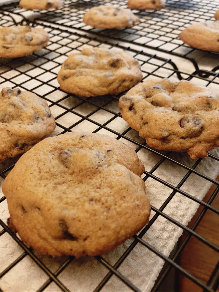 delicious chocolate chip cookies cooling on a baking rack