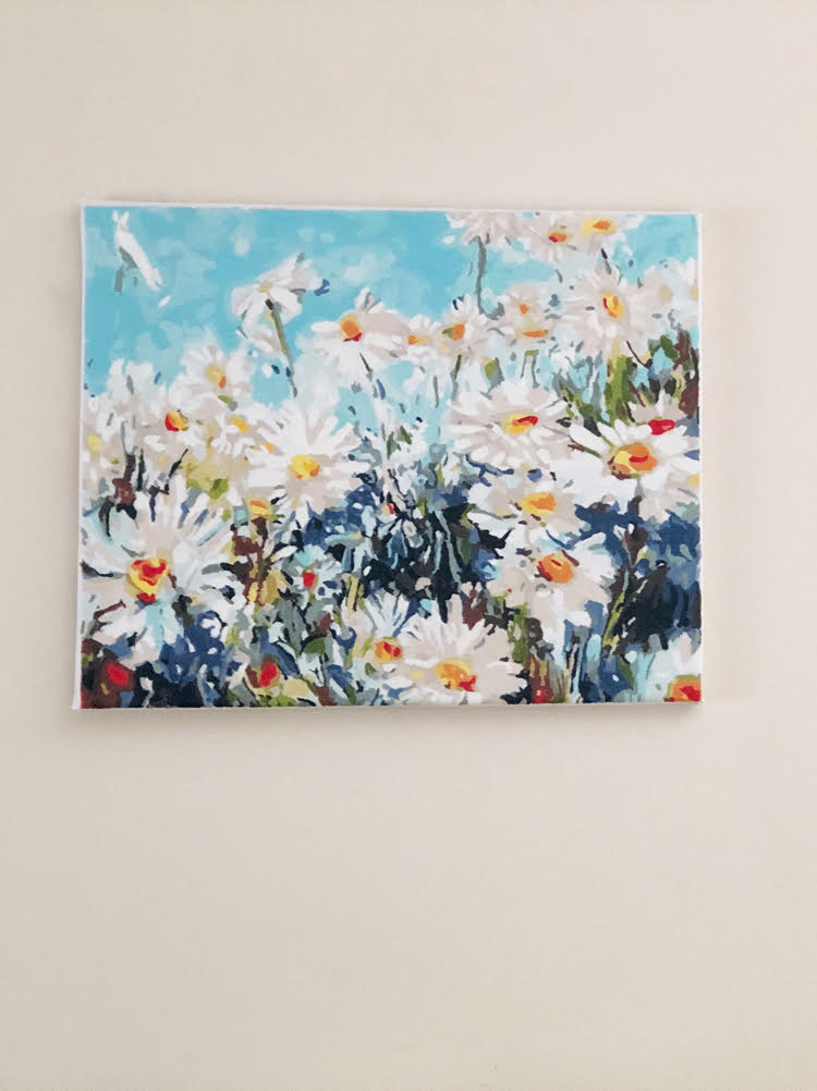 Field of Daisies paint by numbers painting on a wall