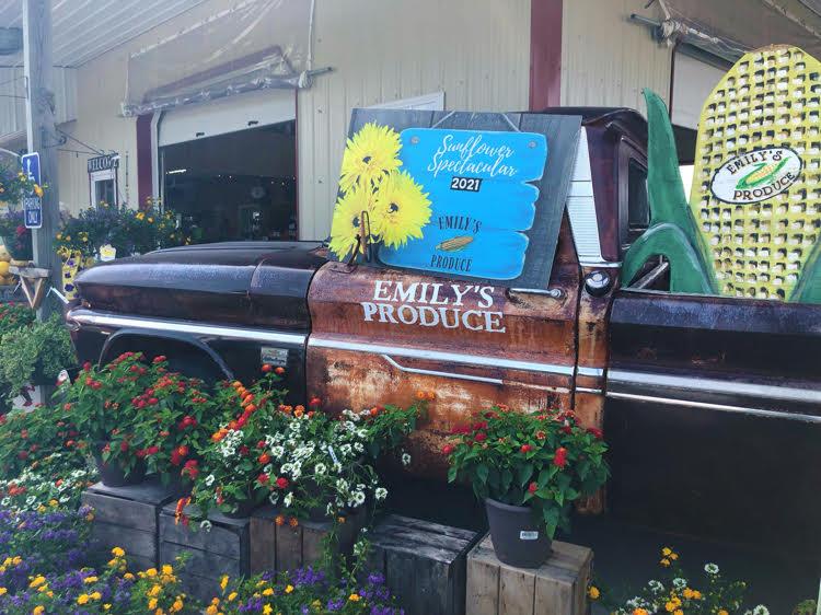 Emily's Produce farmer's market in Maryland