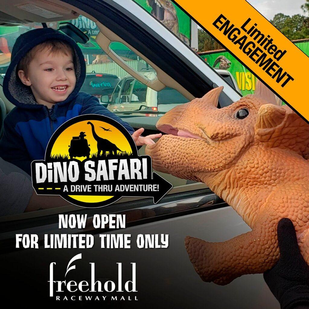 boy at the Dino Safari at Freehold Raceway Mall
