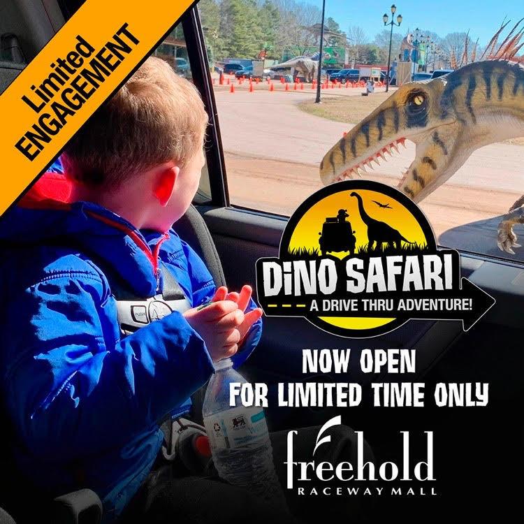 boy enjoying the Dino Safari at Freehold Raceway Wall